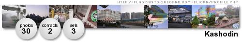 Flickr Profile
