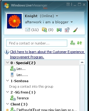 Windows Life Msger Interface