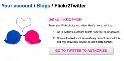 flickr_-add_twitter