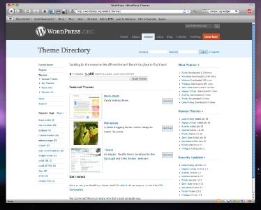 wordpress-extend-theme.jpg